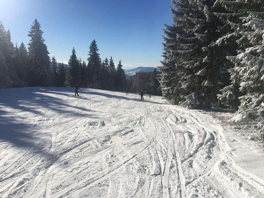 Alpen-, Jura und Vogesen: alles vom Stübenwasenlift aus zu sehen! Winter pur in 1200 m Höhe.
