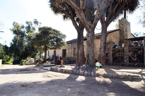 歴史的なゾルティア牧場の家