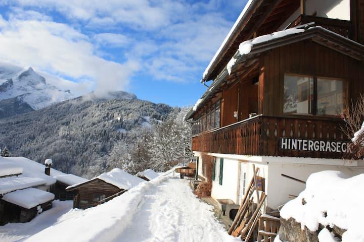 Große Ferienwohnung im Gebirge in Hintergraseck