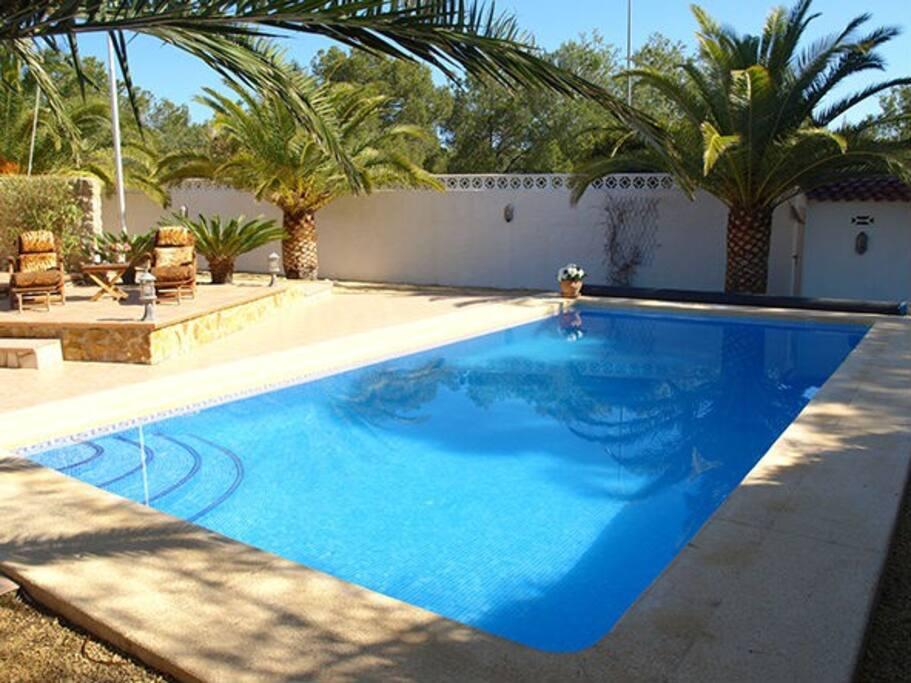 Pool 8x4 m.