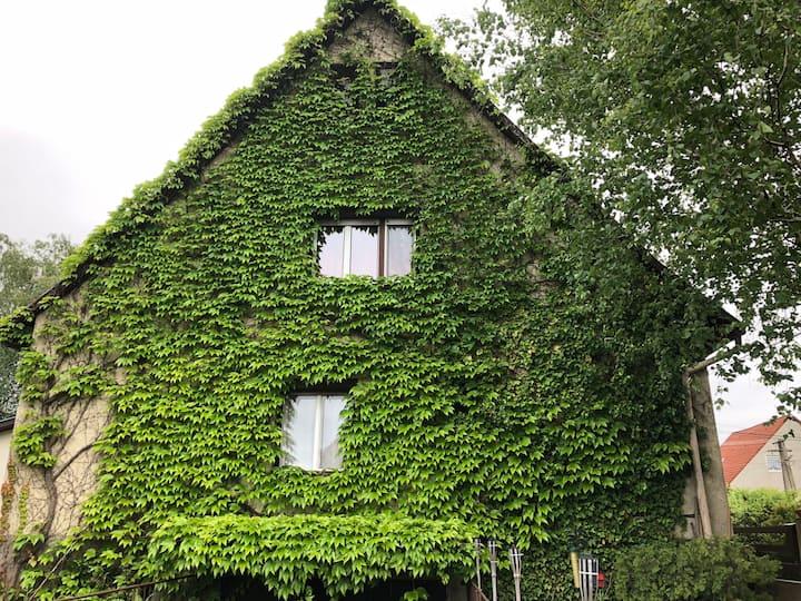 Veranda Apartman - Ház az erdő gyógyító ölelésében