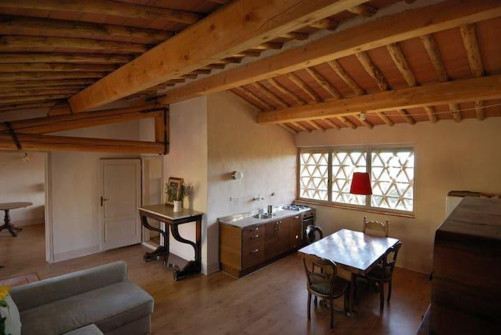 Charming ex. heybarn - Romola - House