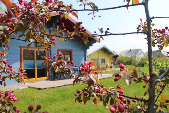 Holzhütte mit Kamin; Sauna nebenan - Kröpelin - Dom