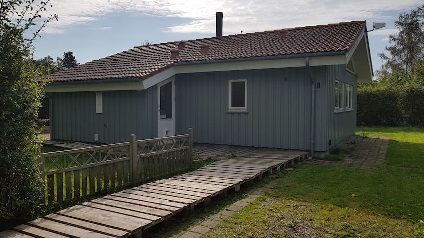 Authentic beach / summerhouse 50m from the sea