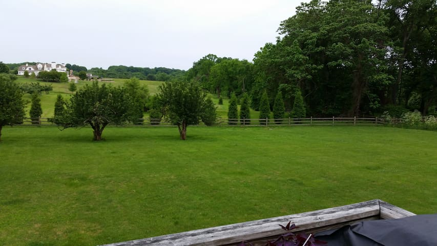 view from deck of backyard