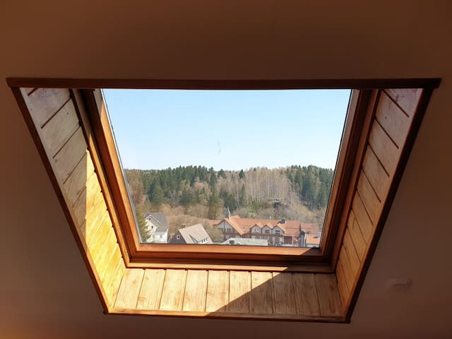 Blick aus dem Spitzboden-Fenster