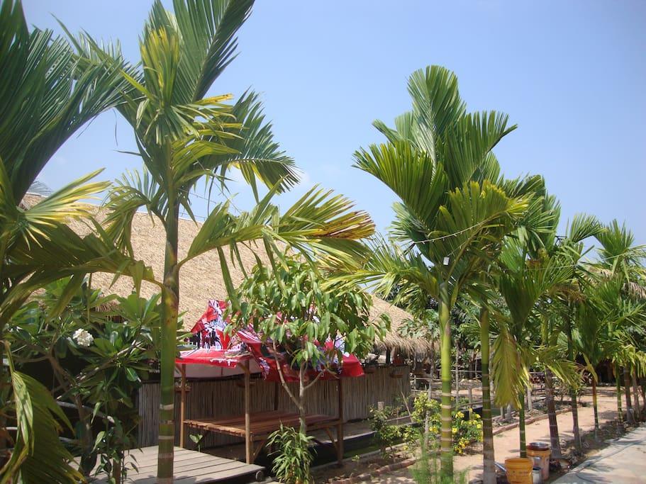 Garten mit Restaurant