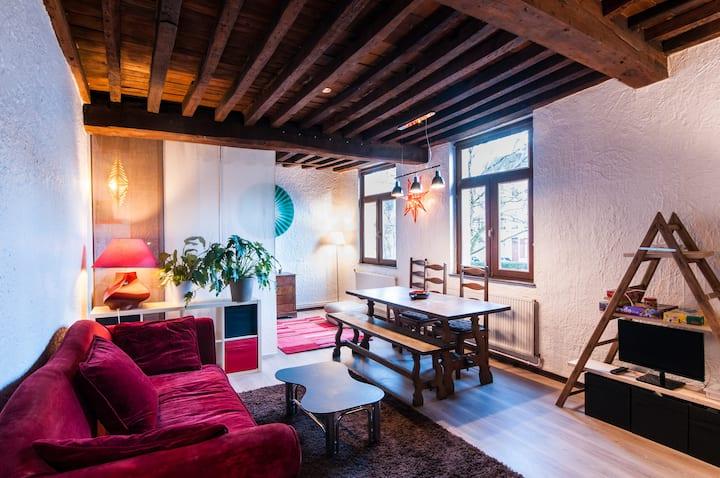 Zen apartment Vieux-Lille II
