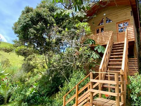 La Casa en el Bosque