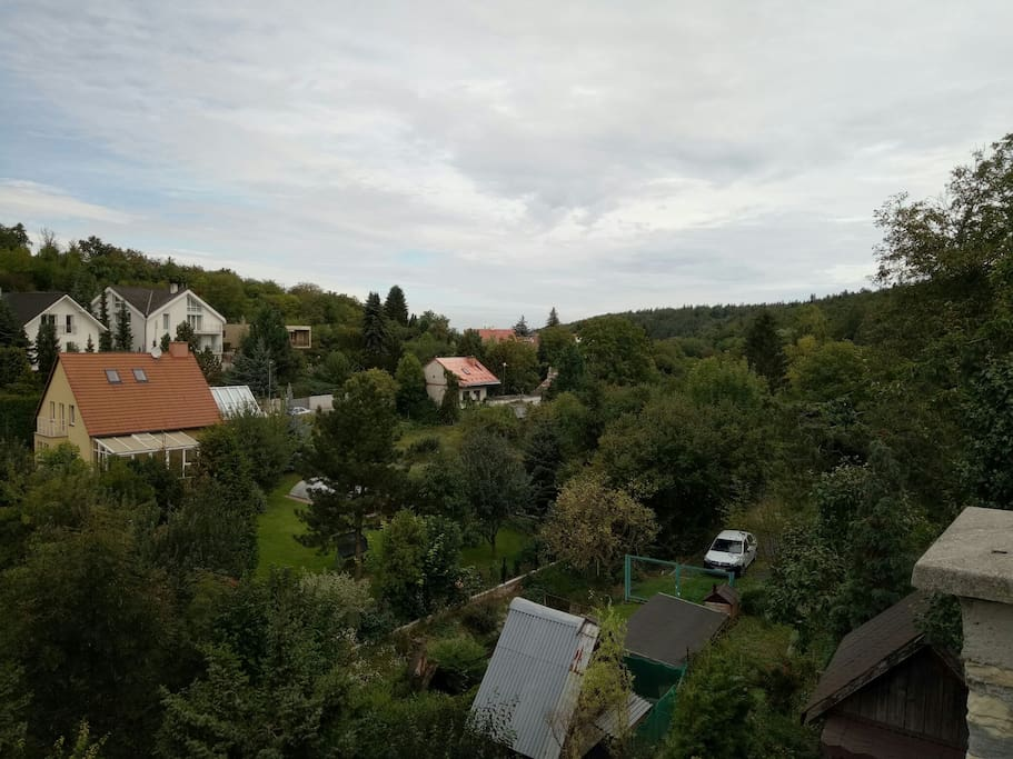what is seen from the house