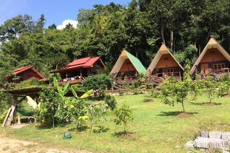 FAINAL LAND CHIANG DAO - CHIANG DAO - Chatka