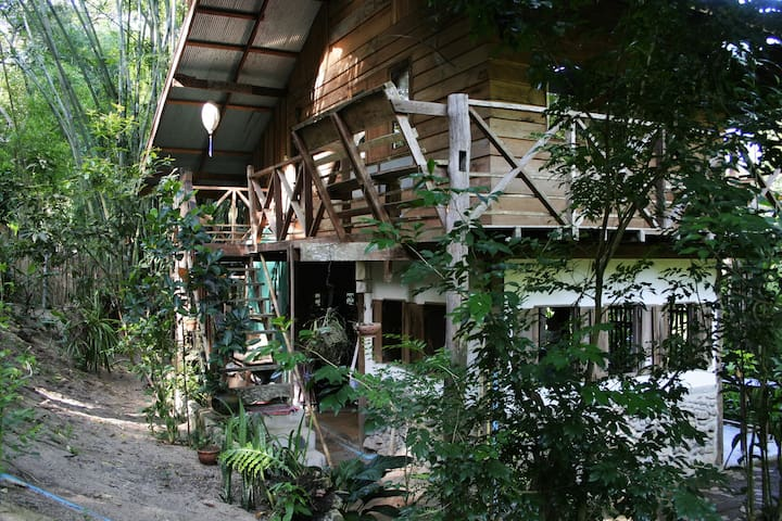 Jungle hide away - Pai - House