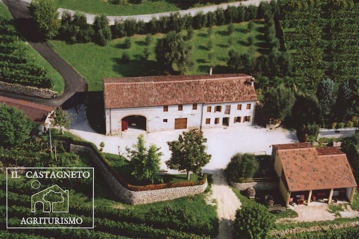 Monolocale Aurora, Il Castagneto, Colli Euganei
