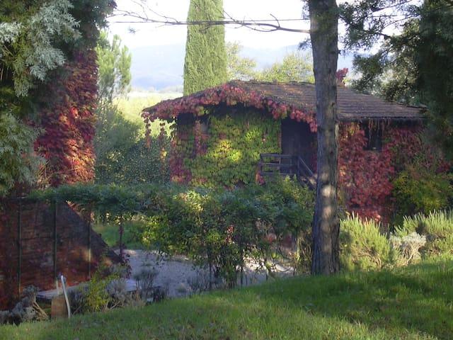 la stellina  - Pietraviva Bucine - House