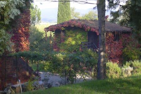 la stellina  - Pietraviva Bucine