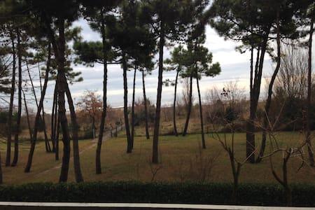 apartment first row to the sea - Cavallino-Treporti - Departamento