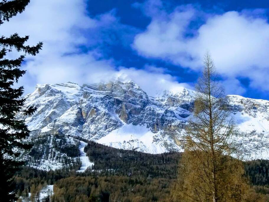 Live like a local family friendly chalet chalet in for Affitto chalet cortina