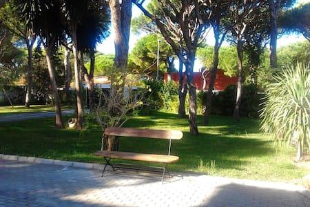 Pequeño Bungalow cerca de la playa. - Poblado Sancti Petri - Casa