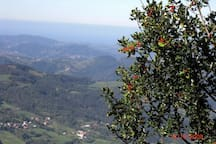 vista desde la majada de Espineres, en el Sueve
