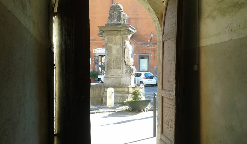 """La Casa dei Delfini, per """"amatori"""". - Campagnano di Roma - Apartmen"""