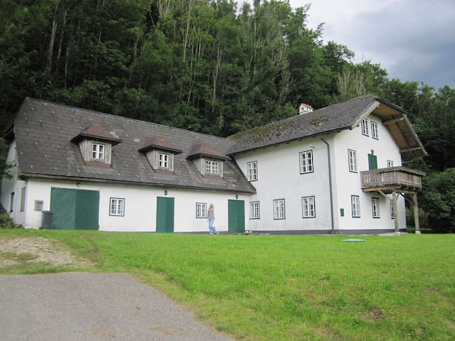 The Forester's House , a retreat - Weißenbach am Attersee - Huis