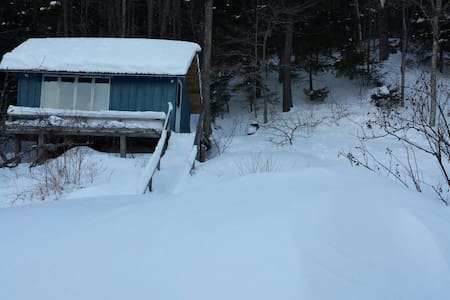 Private cabin with lake access, deck and lake view - Wilmington - Blockhütte