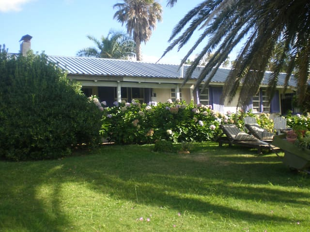 charming garden cottage oceanview - Bella Vista