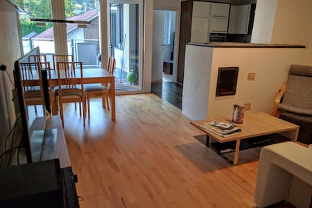 Large modern apt, amazing Alps view, free parking - Lakás