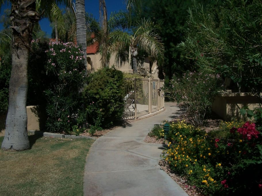 Follow this short path to the pool and jacuzzi