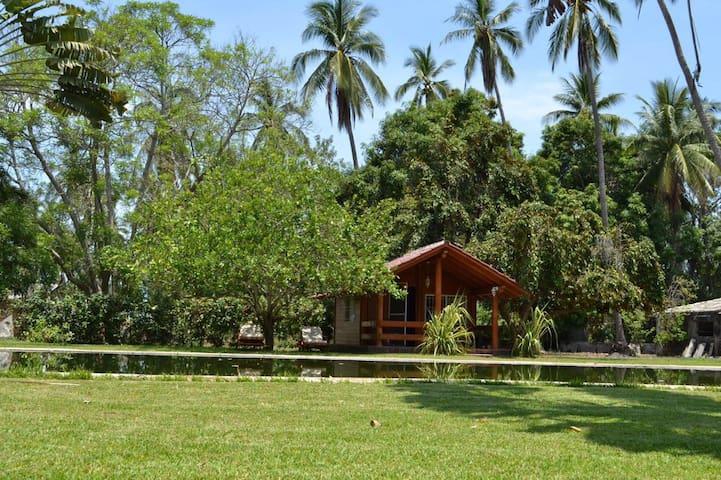 Beach cabin in tropical paradise
