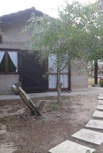 Casa en el bosque, Anaconda