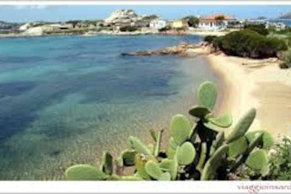 Tegge la spiaggia raggiungibile a piedi dal condominio