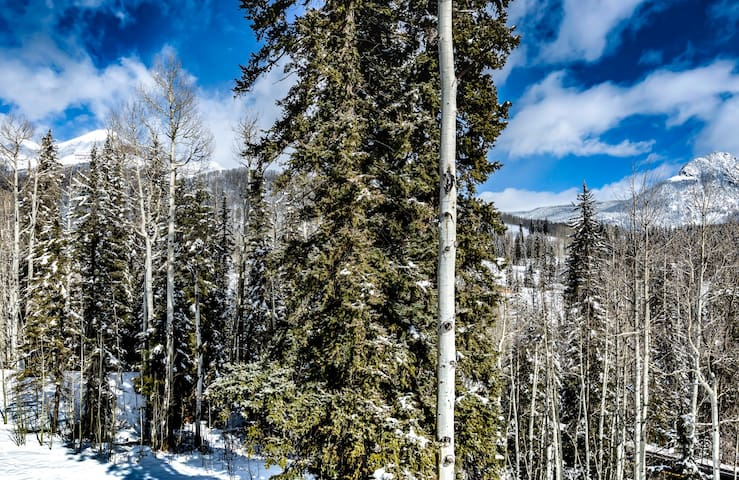 Endlessly rolling Aspen Spruce Woodland wilderness comes right up to our balcony deck