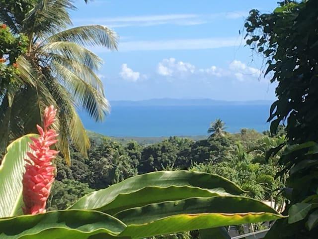 Rainforest Mountain Retreat Home - Ceiba - Casa