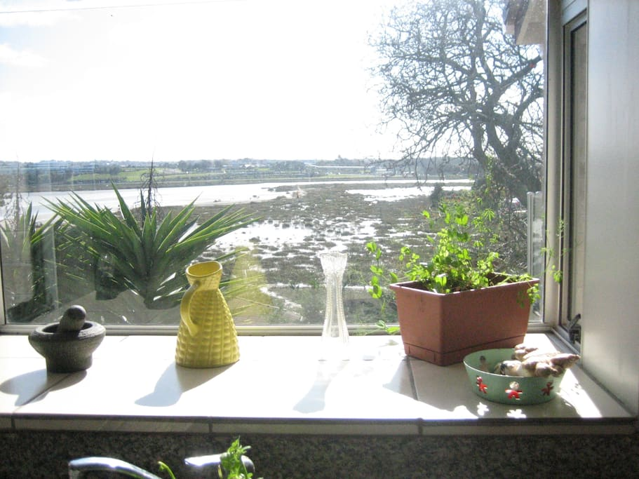 Even the kitchen has good views