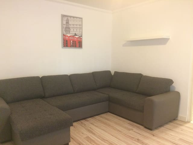comfortable downtown apartment