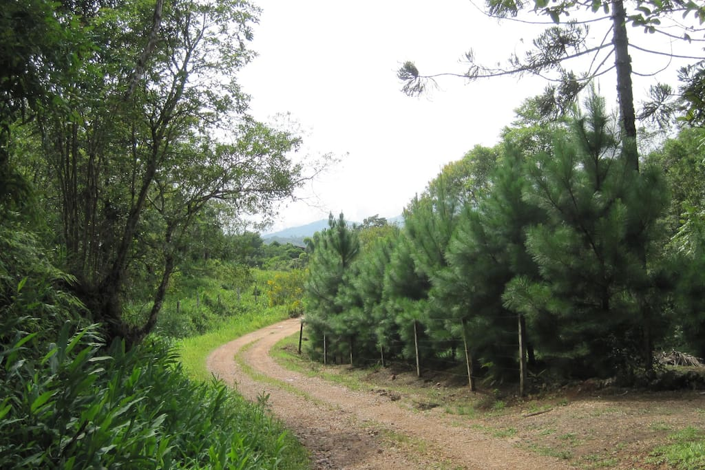 Estrada de acesso -BR