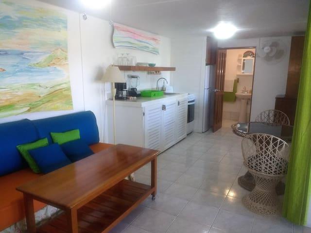 Casa Pelada - 1BdRm - 2min. Walk to Beach/La Luna
