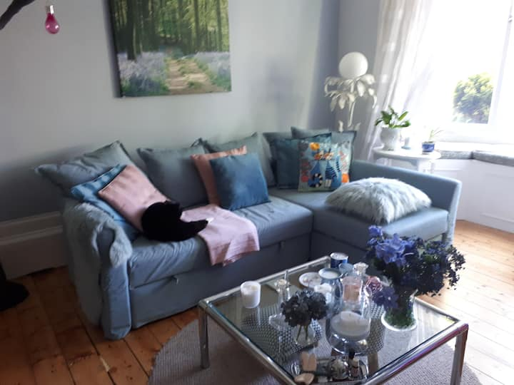 Room for a cat lover in all female flat