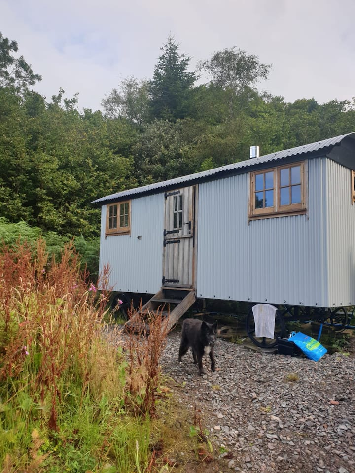 Gorgeous hut, great location, log stove, en-suite