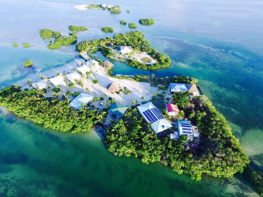 royal palm island private island resort bungalows zur miete in belize city belize district. Black Bedroom Furniture Sets. Home Design Ideas