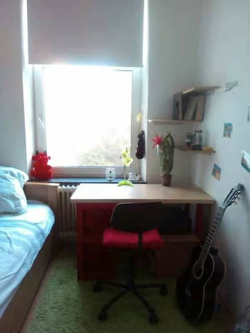 Center, international, cozy Room
