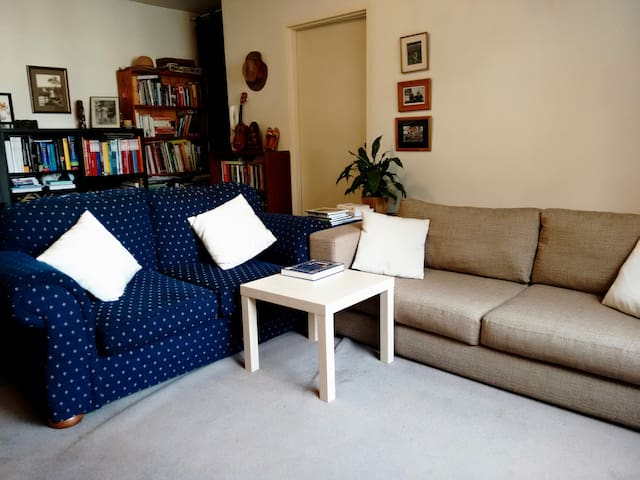Two cosy couches