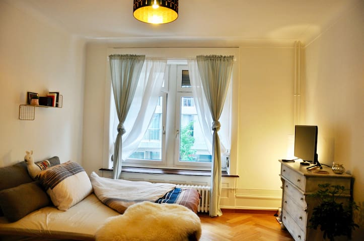 Cozy room in the nicest, hippest part of Zurich