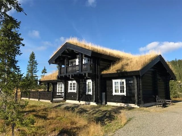 Spacious modern log-cabin at Sjusjøen. - Ringsaker