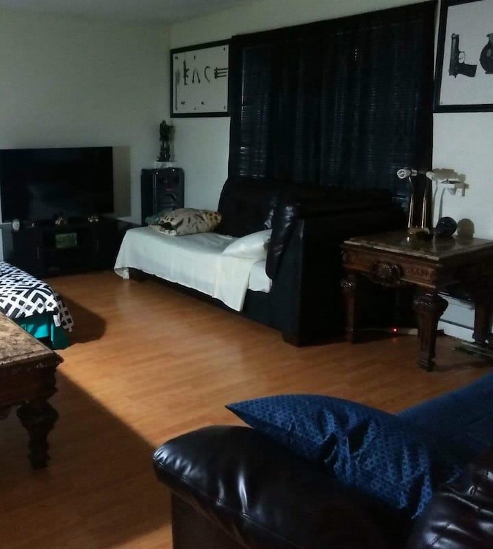 420 and 710 friendly couch for rent in Denver 1