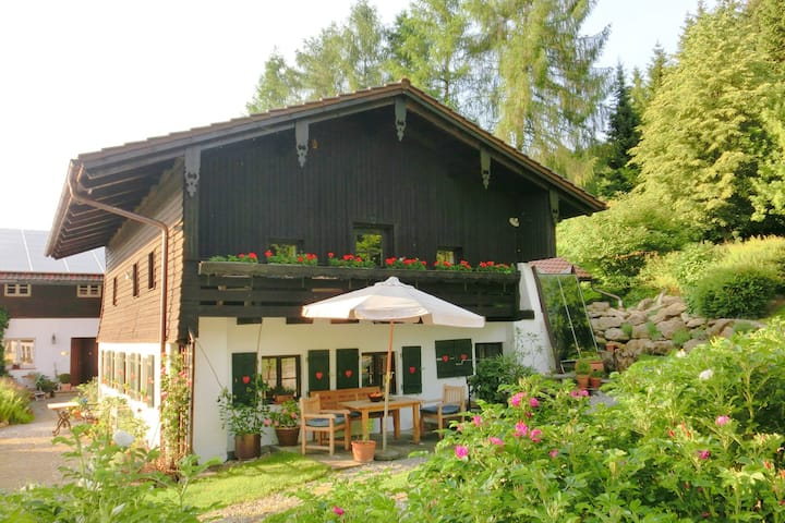 Accogliente casa vacanze a Kollnburg con terrazza