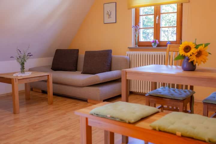 """Bioweingut Bertram Isele, (Vogtsburg-Achkarren), Ferienwohnung """"Helios"""" mit 45 qm, 2 Schlafzimmer für max. 4 Personen (2 Erw.)"""