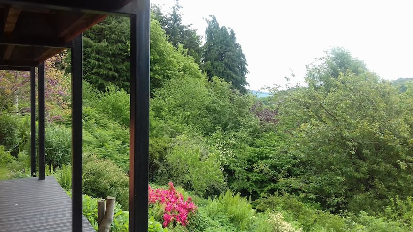 View of the garden from the veranda outside the sitting area