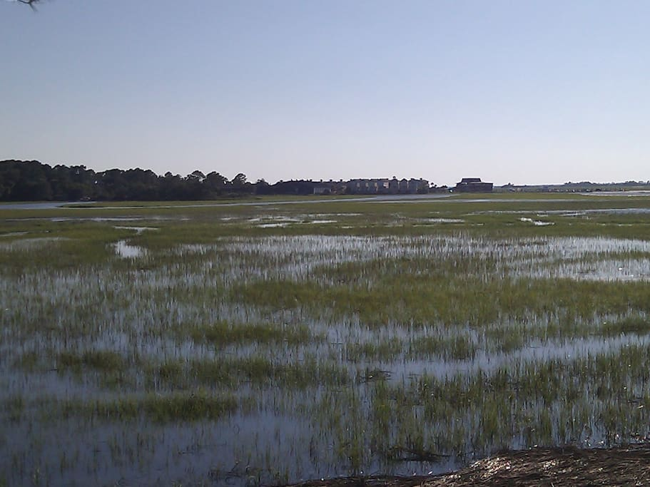 View of a flood tide from the back deck